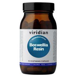 Boswellia Resin 90cps (Pryskyřice kadidlovníku)
