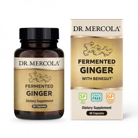 Fermented Ginger (zázvor), Perila Křovitá, 60 kapslí