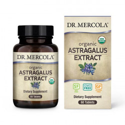 Astragalus Extract, 300 mg, 60 tablet