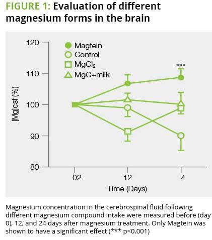 Magtein graf