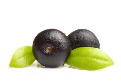 acai berry plody