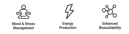 nalada energie